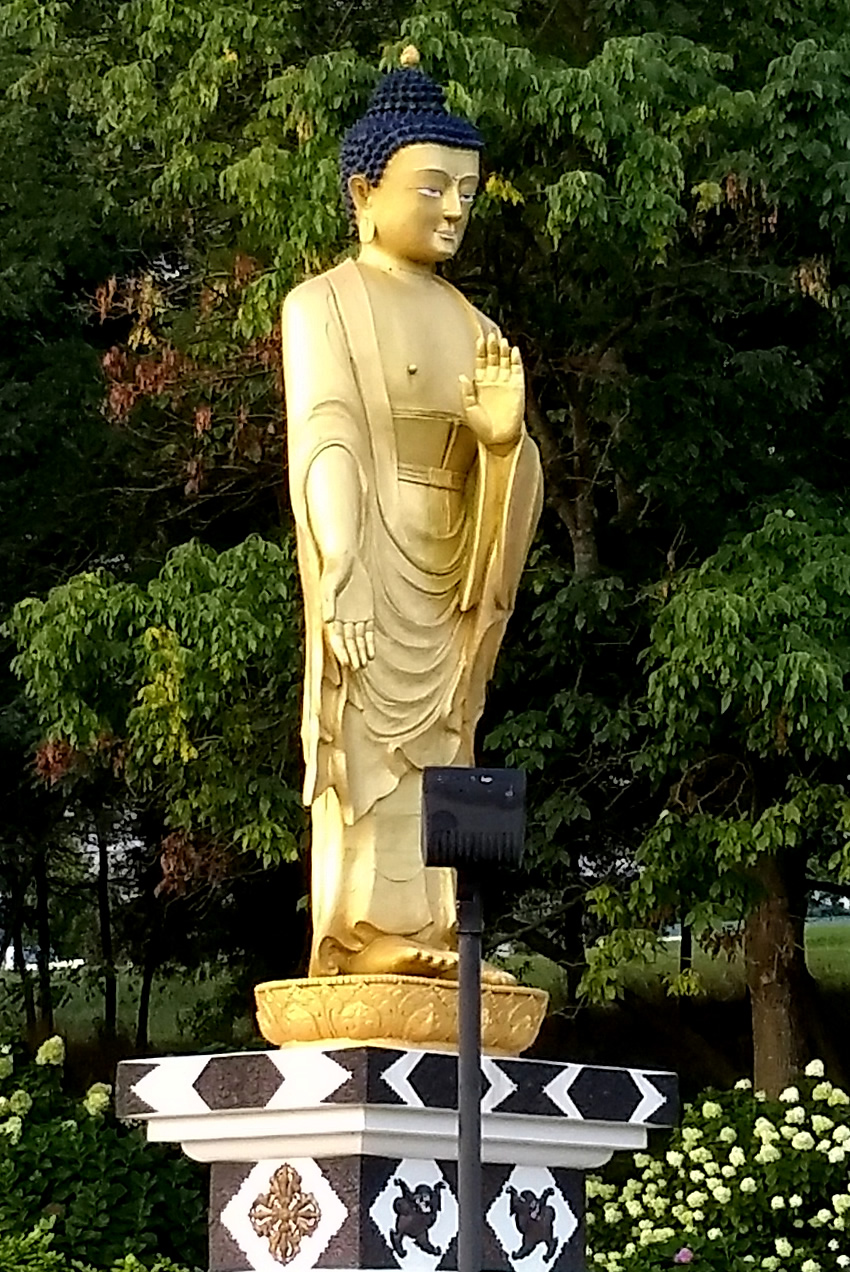 The Lotus Garden Buddha