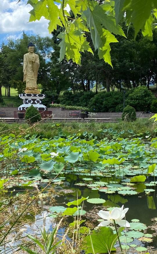 Buddha Park at Mindrolling Lotus Garden