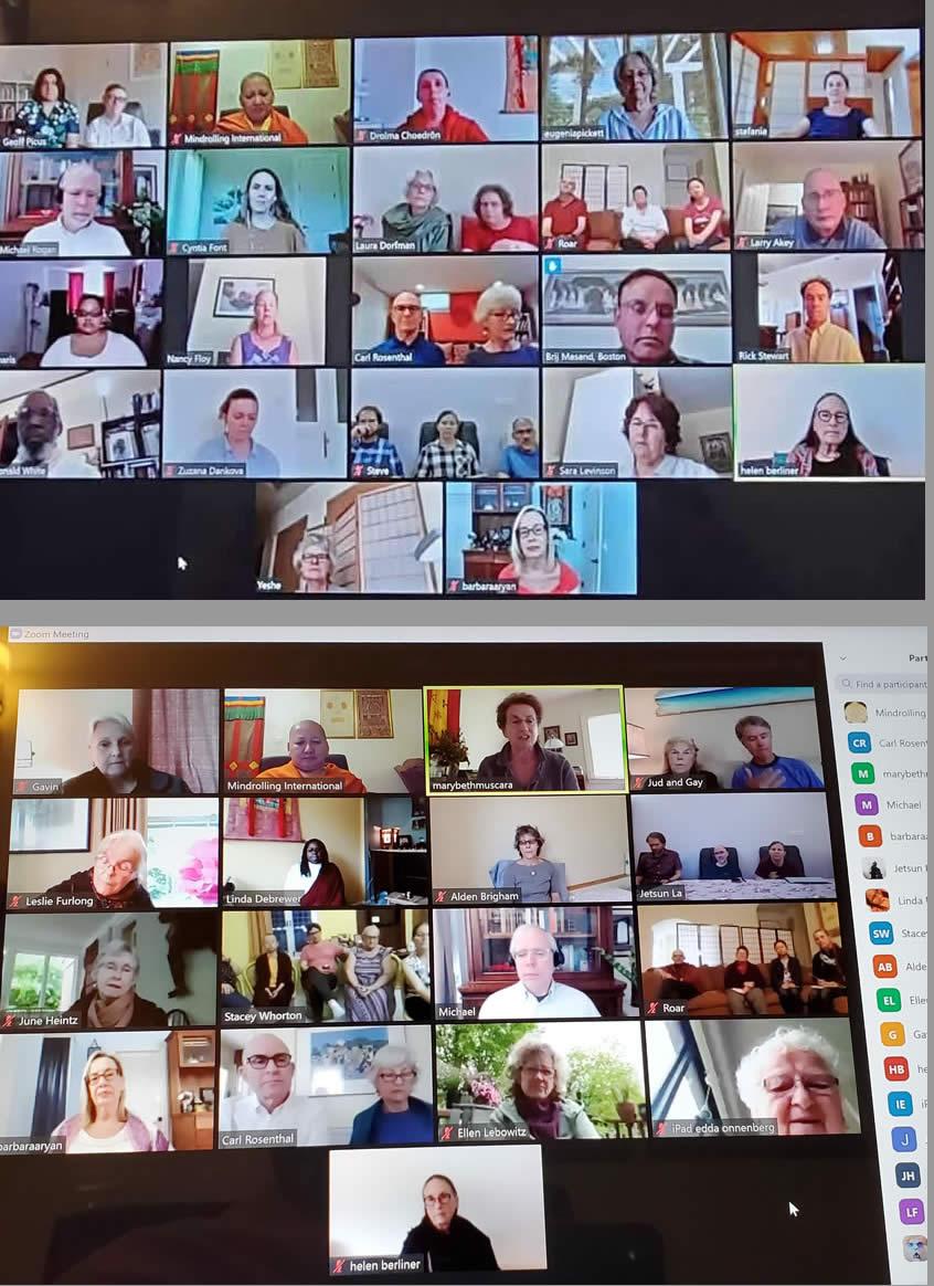 Deleg Zoom Screens